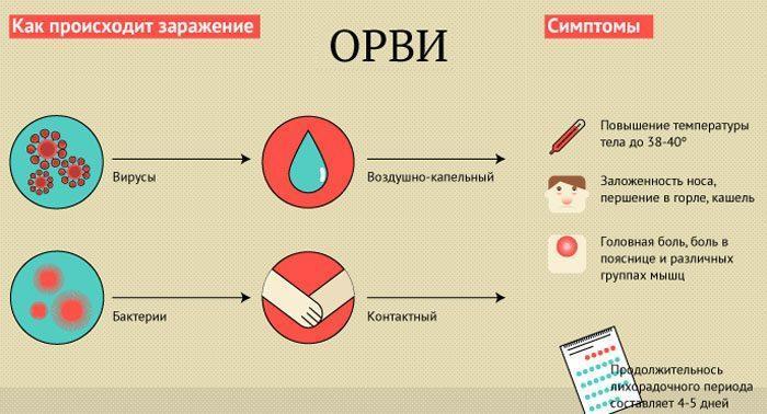 Заражение и симптомы орви