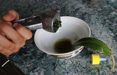 Отжимание сока