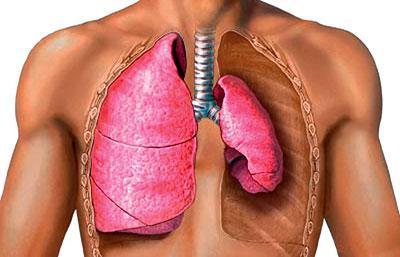 Симптом пневмоторакса