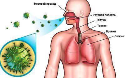 Воздушно-капельный путь инфицирования