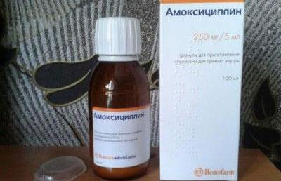 Суспензия амоксоциллина