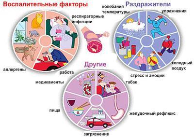 Причины астмы