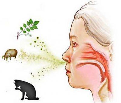 Ребёнок вдыхает аллерген