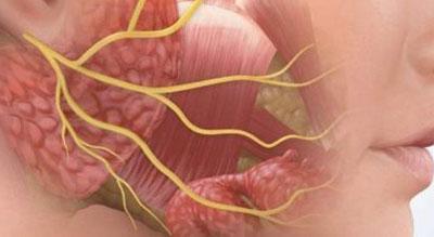 Воспалительный процесс при ларингите