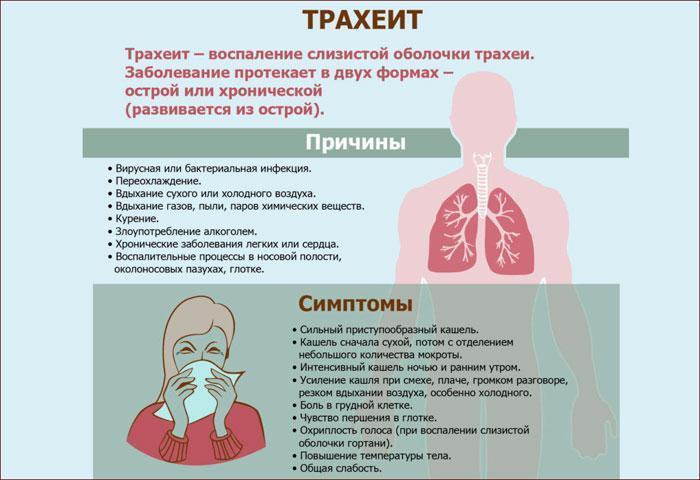 причины и симптомы трахеита
