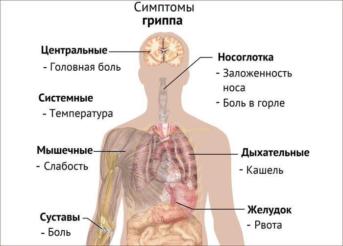 Симптомы гриппа.