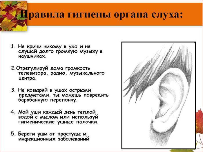 Правила гигиены органа слуха