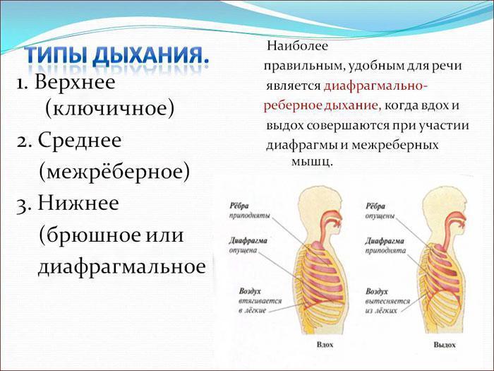 Типы дыхания