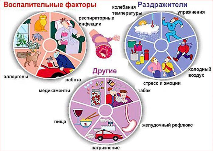 Факторы, вызывающие бронхит