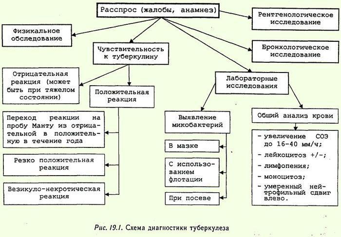 Диагностика туберкулёза