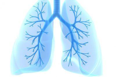 Распространение частиц лечебного вещества по бронхиально-лёгочному древу