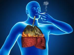 Влияние никотина на лёгкие