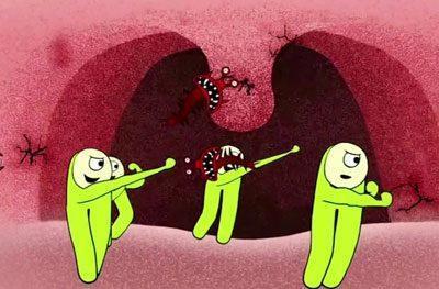 Действие лизобакта
