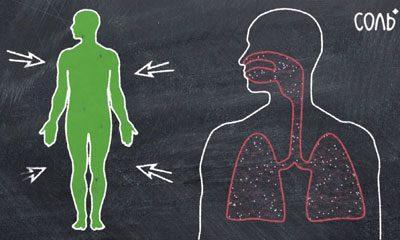 Воздействие соли на организм
