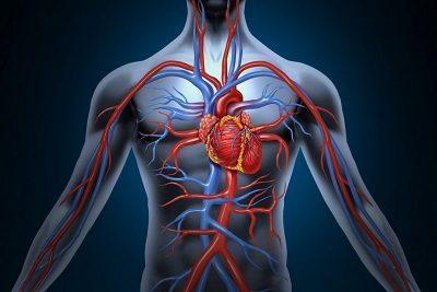 Тяжёлые патологии кровообращения.