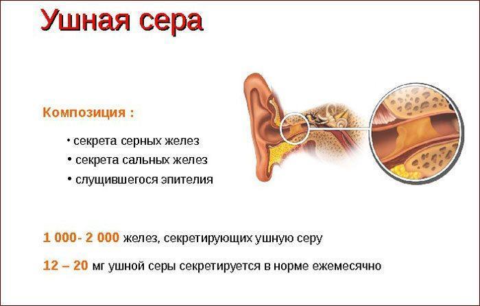 Состав и выработка ушной серы