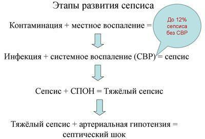 Этапы развития сепсиса