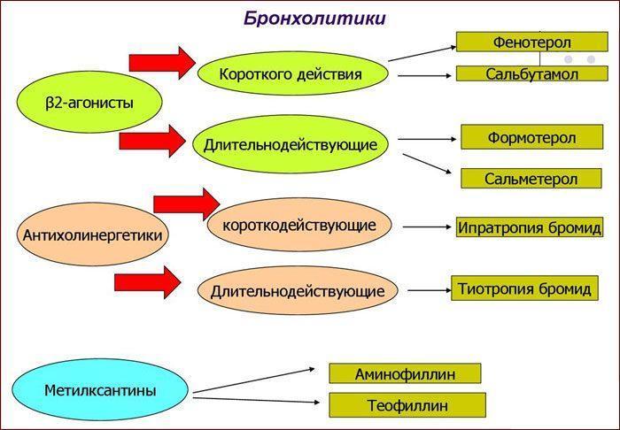 Препараты бронхолитики